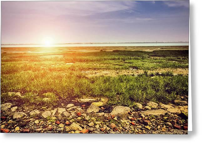 Marshland Greeting Card by Wim Lanclus