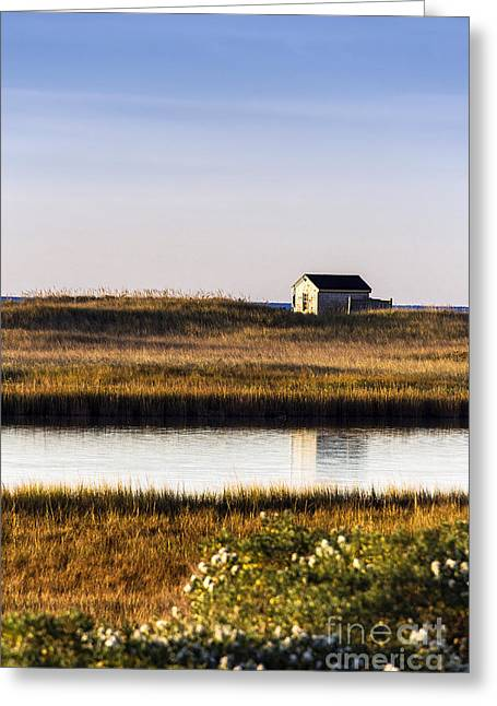 Off The Grid Greeting Cards - Marthas Vineyard Beach Shack Greeting Card by John Greim