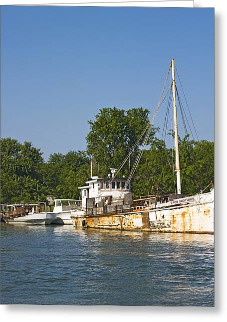 Eastern Shore Greeting Cards - Maryland Eastern Shore Tilghman Island Greeting Card by Brendan Reals