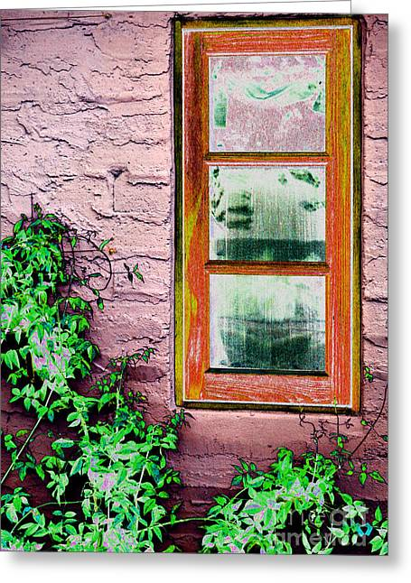 Interior Still Life Greeting Cards - Marys Window Greeting Card by Lew Lautin