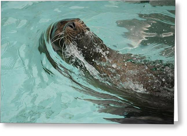 Master Swimmer Greeting Card by Shelley Smith