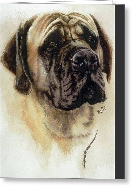 Working Dog Greeting Cards - Mastiff Greeting Card by Barbara Keith