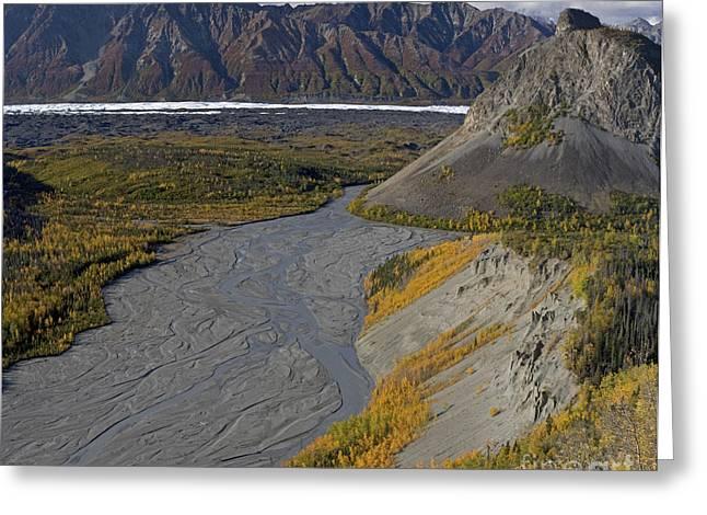 Matanuska Greeting Cards - Matanuska Glacier and South Fork River Greeting Card by Tim Grams