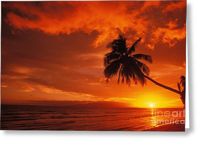 Maui, A Beautiful Sunset Greeting Card by Ron Dahlquist - Printscapes