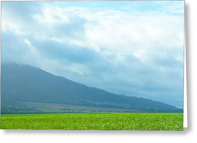 Panoramic Ocean Greeting Cards - Maui Mountain View Greeting Card by Sheela Ajith
