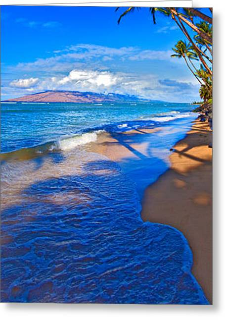 Maui Greeting Cards - Maui palms Greeting Card by James Roemmling