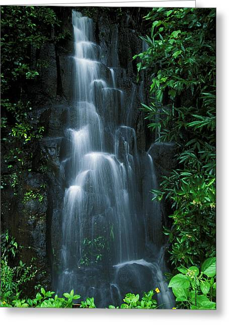 Amazing Greeting Cards - Maui Waterfall Greeting Card by Ron Dahlquist - Printscapes