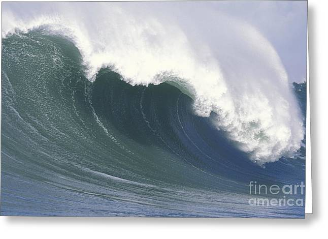 Mavericks Empty Wave Greeting Card by Stan and Anne Foster