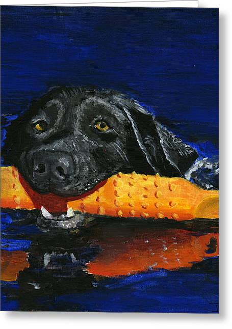 Fetching Water Greeting Cards - Max Greeting Card by Debbie Brown