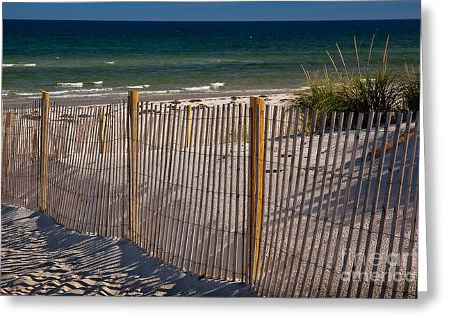 Mayflower Beach Greeting Card by Susan Cole Kelly