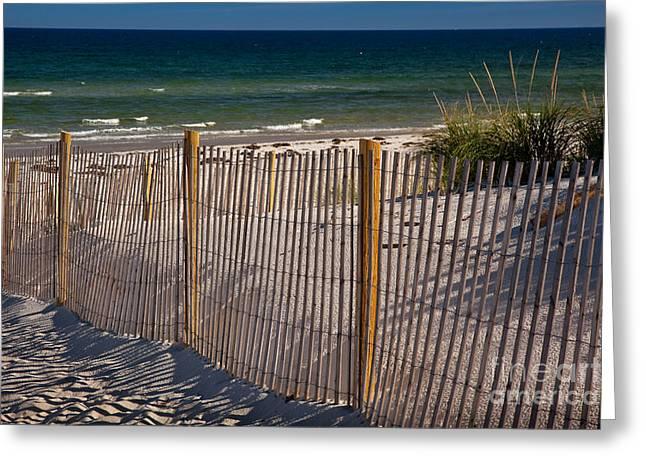 Eastern American Beach Grass Greeting Cards - Mayflower Beach Greeting Card by Susan Cole Kelly