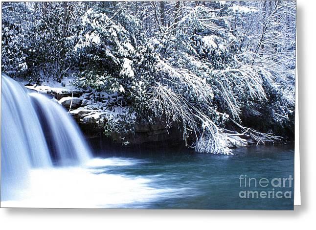 Mccoy Falls Birch River West Virginia Greeting Card by Thomas R Fletcher