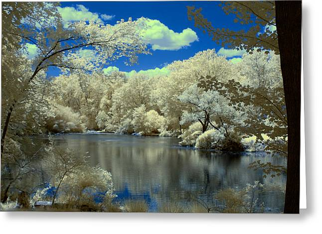 Pond In Park Greeting Cards - McFaul Pond Greeting Card by Dimitri Meimaris