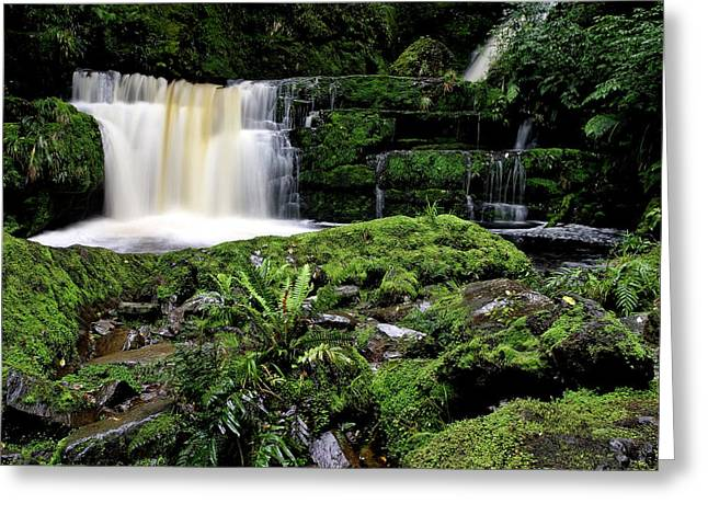 Mclean Greeting Cards - McLean Falls in Southland New Zealand Greeting Card by Mark Duffy