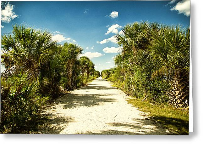 Mccoy Greeting Cards - McQueens Island Trail Greeting Card by A Different Brian Photography