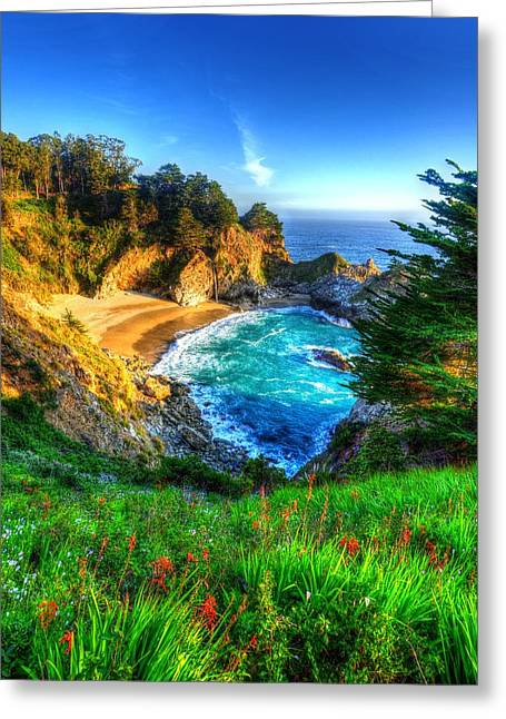 Big Sur Beach Greeting Cards - McWay Cove and Falls Greeting Card by Mark Ruanto