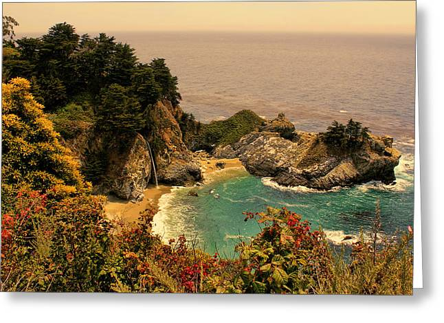 California Ocean Photography Greeting Cards - McWay Cove Golden Hour Greeting Card by Judy Vincent