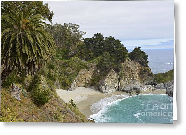 Big Sur California Greeting Cards - McWay Cove Greeting Card by Shawn Dechant