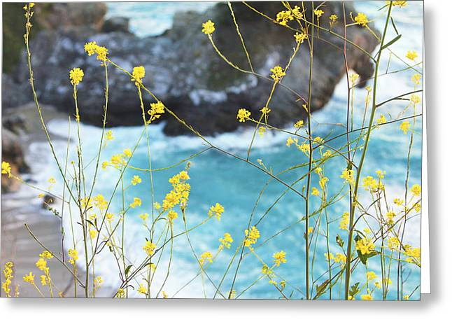 Big Sur Beach Greeting Cards - McWay Falls California Greeting Card by Lina Tomasetti