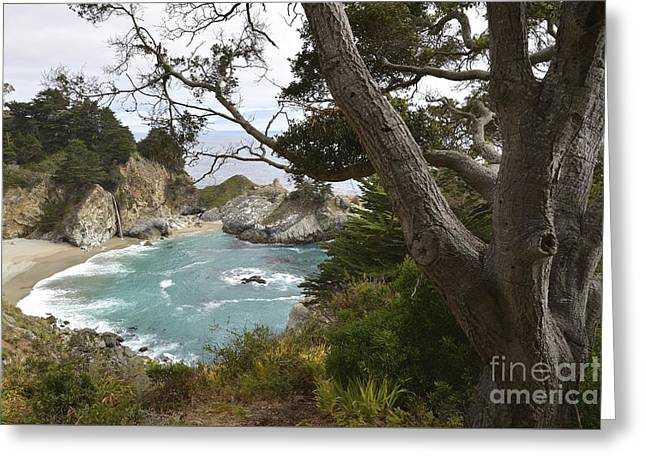 Big Sur Greeting Cards - McWay Waterfall Greeting Card by Shawn Dechant