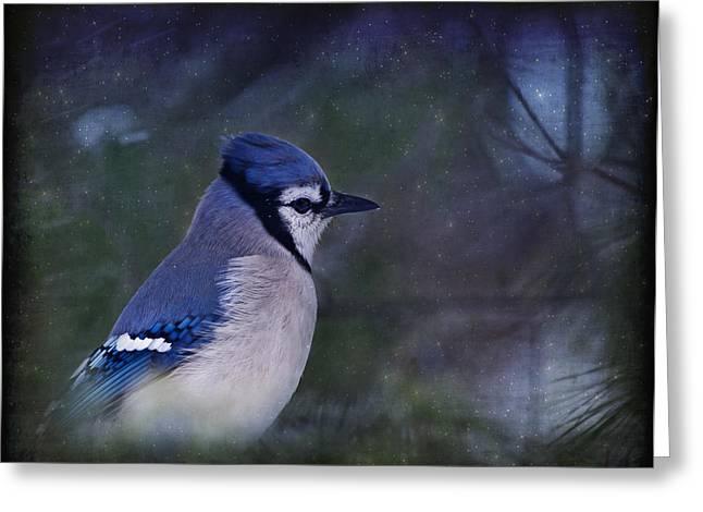 Me Minus You - Blue Greeting Card by Evelina Kremsdorf
