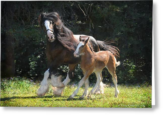 Clydesdale Greeting Cards - Meadow and Orion Greeting Card by Terry Kirkland Cook