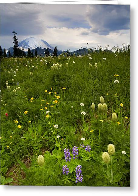 Storm Clouds Greeting Cards - Meadow Beneath the Storm Greeting Card by Mike  Dawson