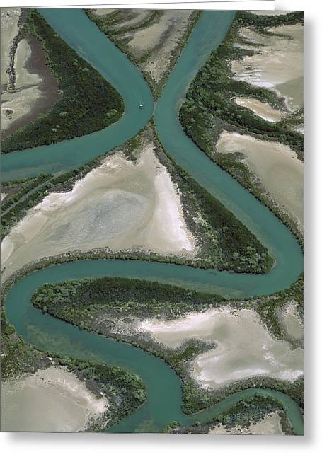 Ai Greeting Cards - Meandering Rivers, Gulf Of Carpentaria Greeting Card by Jean-Paul Ferrero