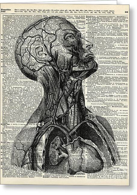 Ink Drawing Greeting Cards - Medical Human Anatomy Greeting Card by Jacob Kuch