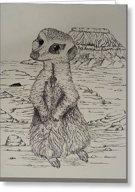 Meerkat Drawings Greeting Cards - Meerkat Curiosity Greeting Card by Taylor Black