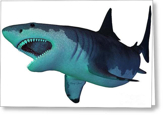 White Shark Greeting Cards - Megalodon Shark Underwater Greeting Card by Corey Ford