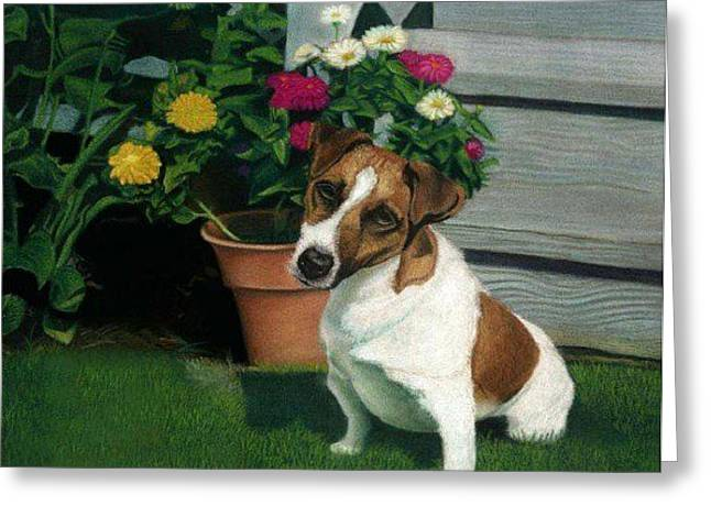Puppies Pastels Greeting Cards - Melancholy Dog Greeting Card by Sara  Raimondo