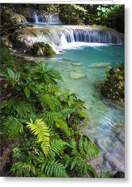 Peaceful Scenery Greeting Cards - Mele Maat Waterfall  Efate Island Greeting Card by David Kirkland