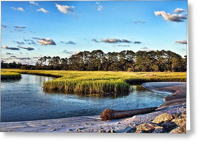 Artist Photographs Greeting Cards - Mellow Marsh Greeting Card by Paula Porterfield-Izzo