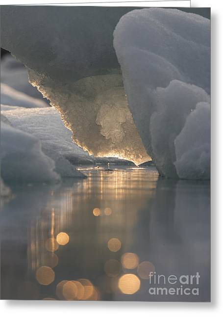 Prince William Sound Greeting Cards - Melting Ice Greeting Card by Tim Grams