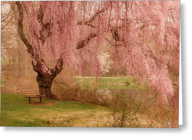 Memories - Holmdel Park Greeting Card by Angie Tirado