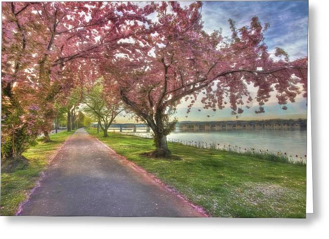 """""""riverfront Park"""" Greeting Cards - Memories of Spring Greeting Card by Lori Deiter"""