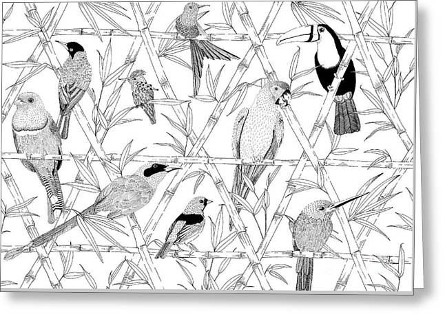 Menagerie Black And White Greeting Card by Jacqueline Colley