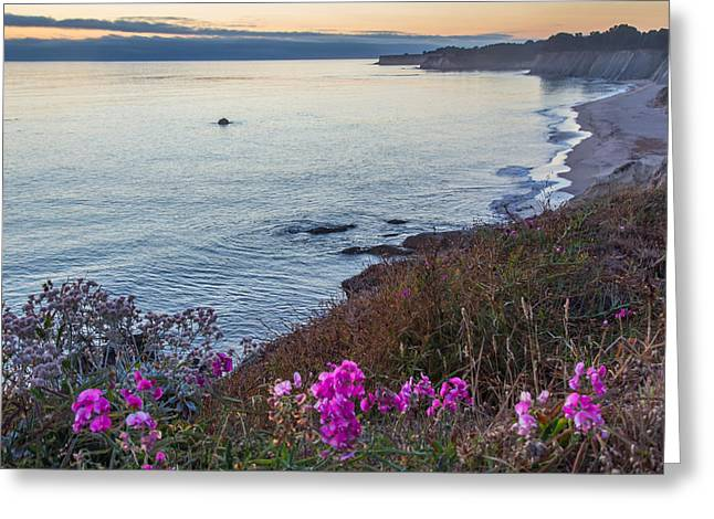 California Beaches Greeting Cards - Mendocino Coast at Sunset Greeting Card by Marc Crumpler