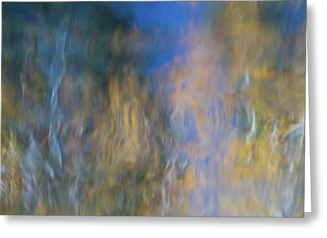 Merced River Reflections 14 Greeting Card by Larry Marshall
