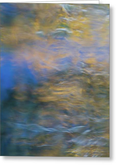 Merced River Reflections 18 Greeting Card by Larry Marshall