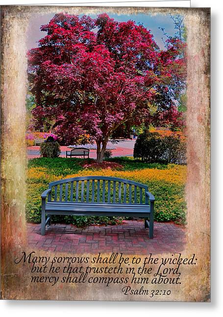 Bible Greeting Cards - Mercy All Around Greeting Card by Larry Bishop