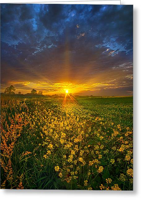 Life Line Greeting Cards - Mere Moments Greeting Card by Phil Koch