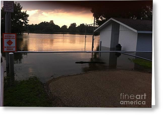 River Flooding Greeting Cards - Meredosia Flooding Greeting Card by David Hobbs