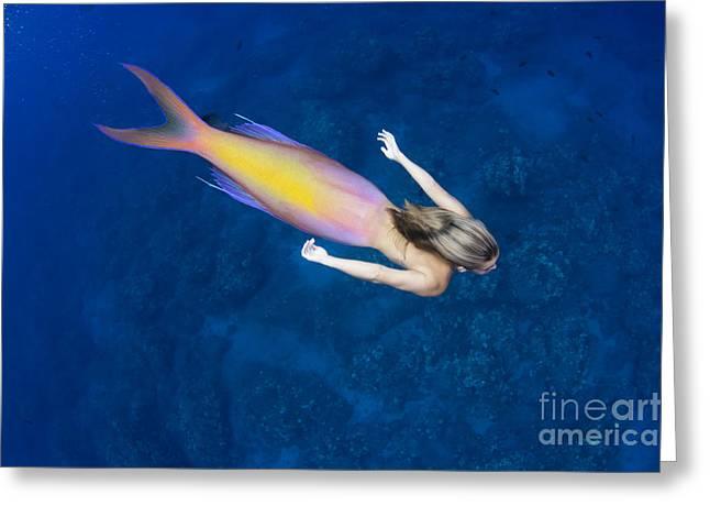 Unnatural Greeting Cards - Mermaid Interpretation Greeting Card by Dave Fleetham - Printscapes