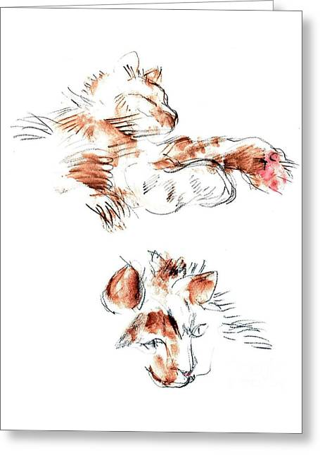 Person Greeting Cards - Merph Greeting Card by Carolyn Weltman