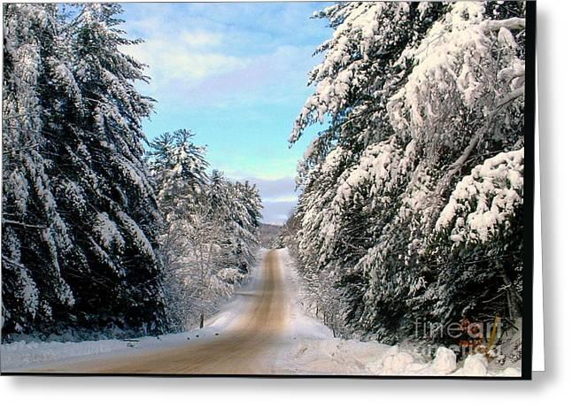 Merry Christmas,happy Holidays Greeting Card by Elfriede Fulda