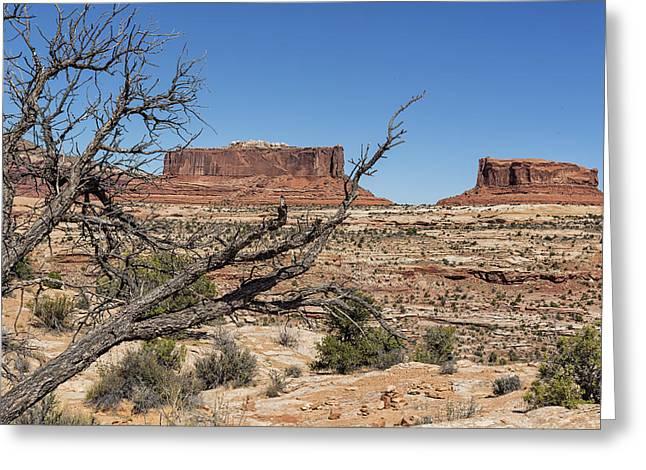 Table Mesa Greeting Cards - Mesas near Moab Greeting Card by Belinda Greb