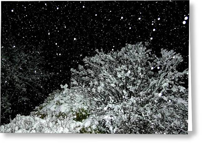 Flash Greeting Cards - Mesmerizing Snowfall  Greeting Card by Will Borden