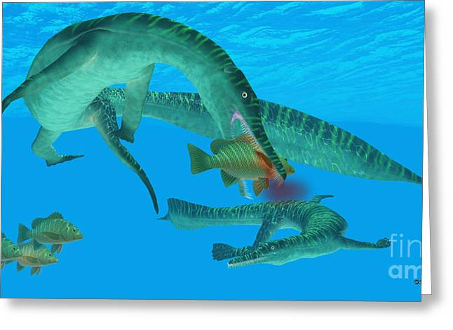 Sea Life Digital Greeting Cards - Mesosaurus Marine Reptile Greeting Card by Corey Ford
